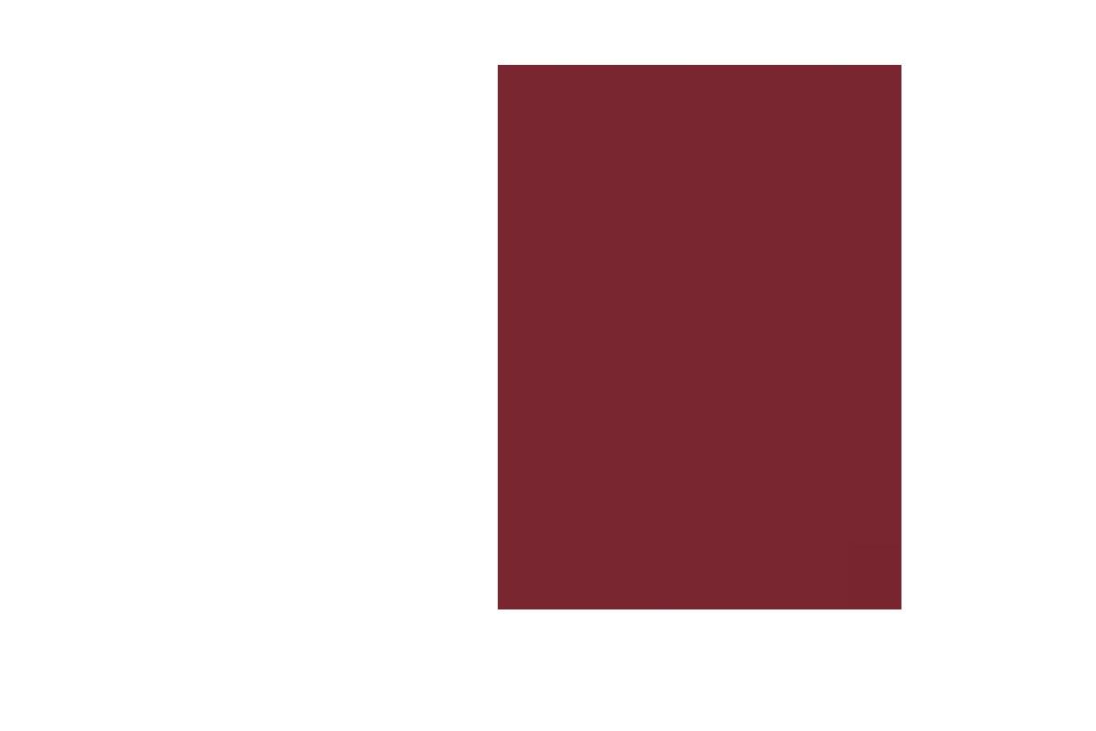https://blaze.nvausa.com/wp-content/uploads/2020/08/about-us-la-blaze.png
